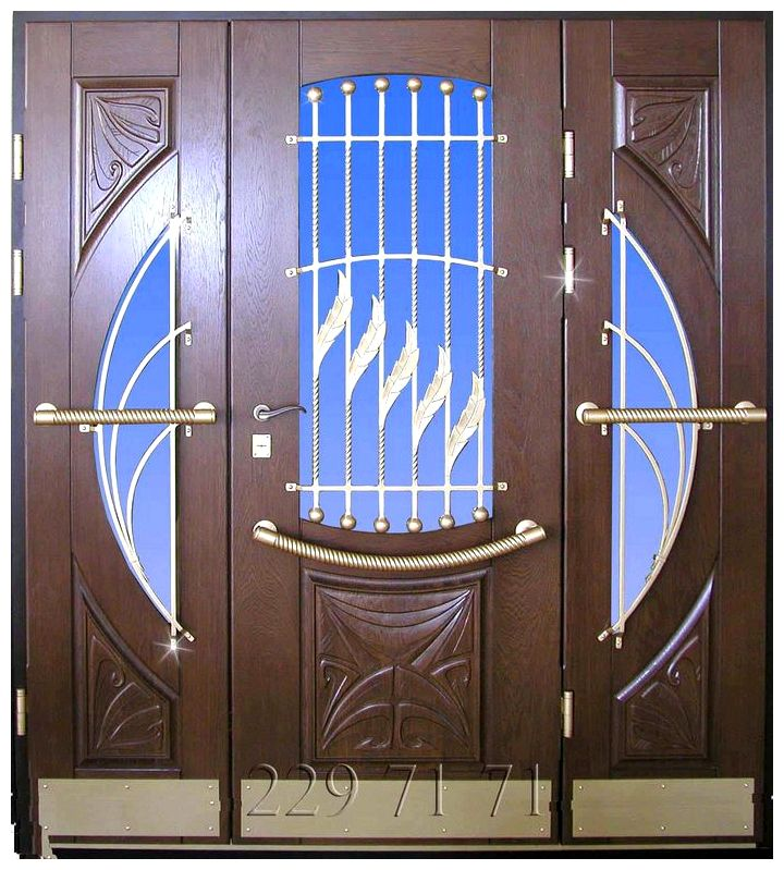 Входные двери в частный дом: фото, цена